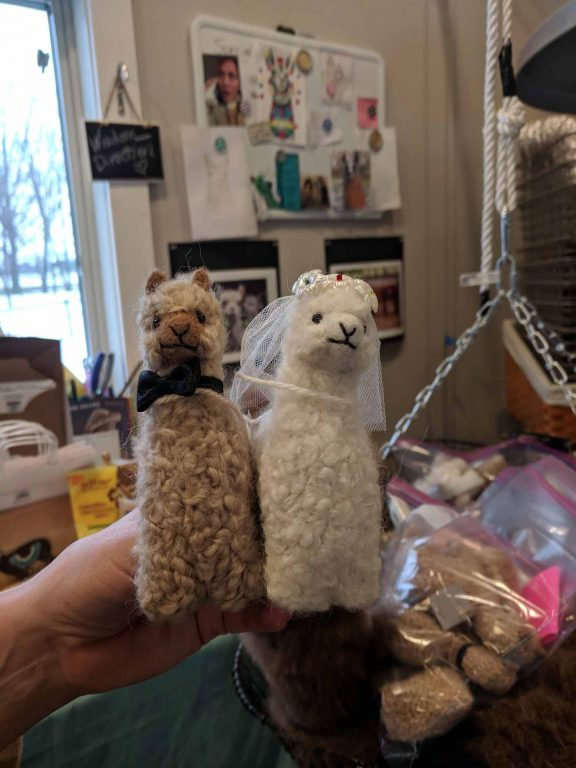 alpaca bride and groom
