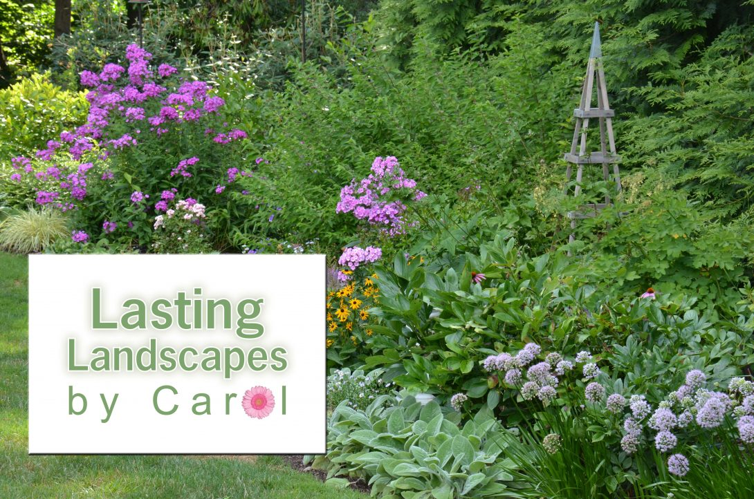 Lasting Landscapes by Carol Home