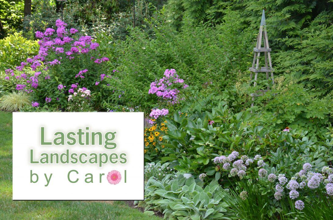 Lasting Landscapes by Carol Home