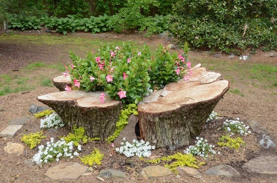 A stump planted with annuals and perennials as a decorative accent in the garden