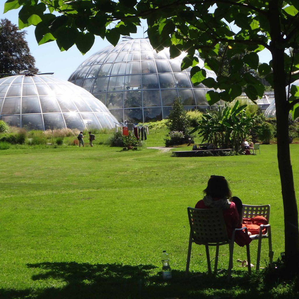 Zurich Botanic Garden
